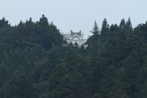 幻の霧が城(昼)